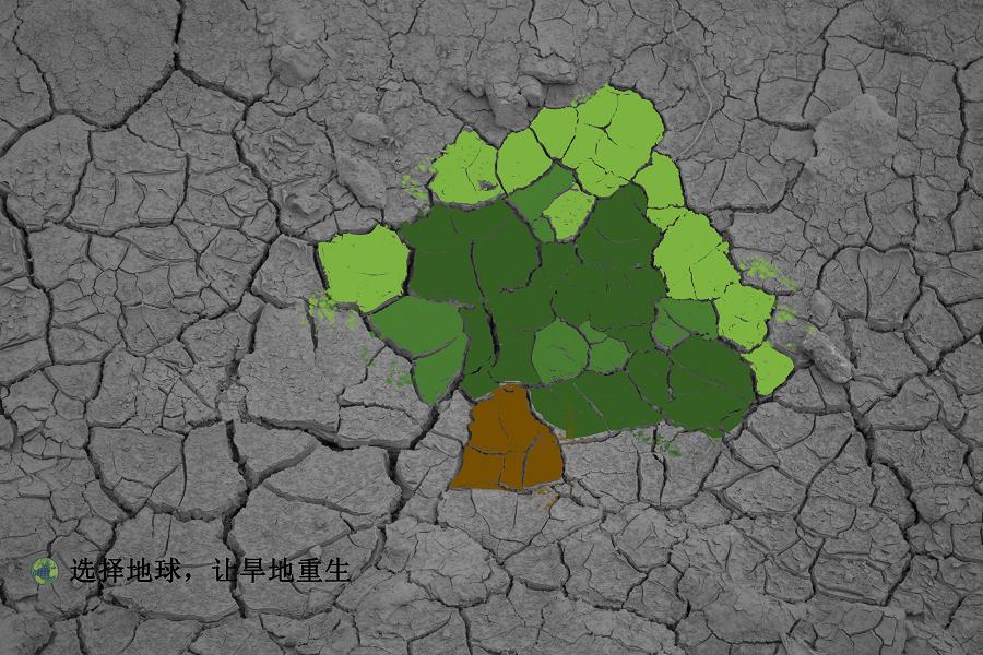 初一创意手绘徐州鼓楼区地图