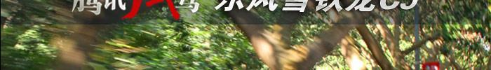 试驾雪铁龙雪铁龙C5_车周刊_腾讯汽车
