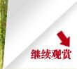 感受浓烈运动气息 腾讯试驾菲亚特博悦_腾讯车周刊_腾讯汽车