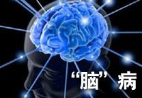肥胖伤大脑