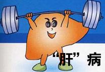 胖子易得脂肪肝