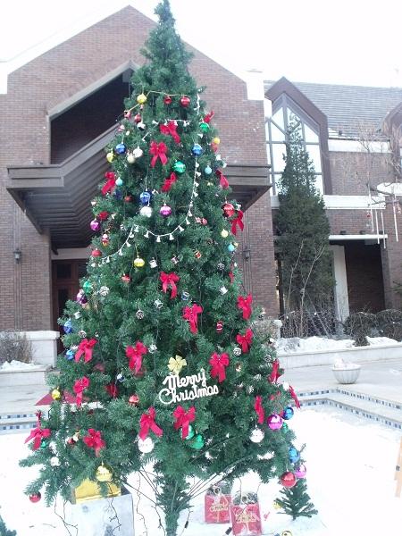 体验中心外面装饰一新的圣诞树