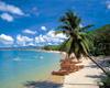 房价狂涨背后需冷静:海南应回归国际旅游岛