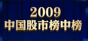 2009中国股市榜中榜