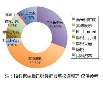 贝恩债转股后国美股权结构图