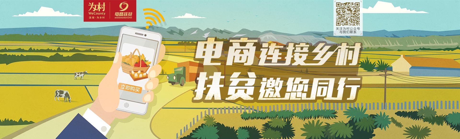 互联网+乡村