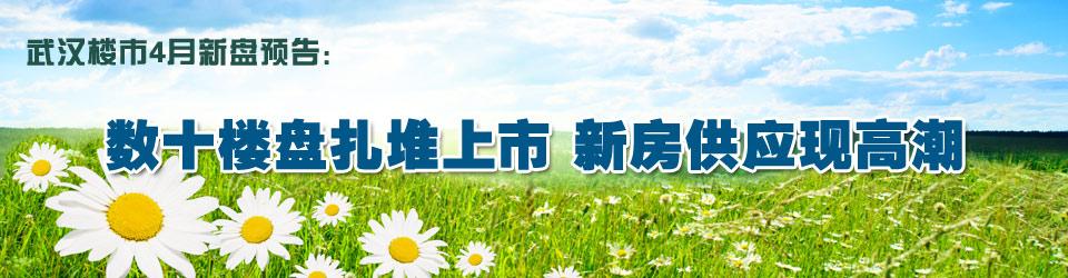 2010年4月武汉新开楼盘一览