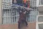 武汉黄陂71岁老人7楼悬空倒立 消防员紧急破门救人