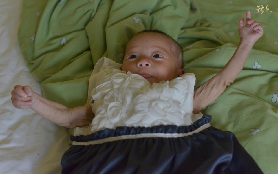 豫见第五期:饥饿宝宝生死历险记21