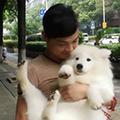 湖南宠物训导师