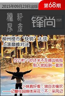 锋地产期刊2015年第68期