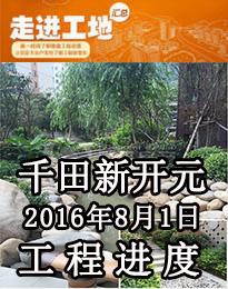 千田新开元8月1日工程进度