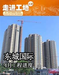 恒宇东城国际4月份工程进度
