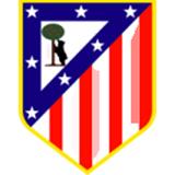 马德里竞技