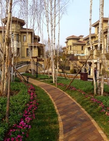 设计图分享小路中庭别墅设计图>庭院前院别墅设计图别墅小路垂直图片