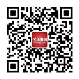 大秦微信扫描图