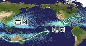 台风是怎样命名的?