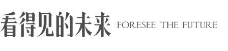 看得见的未来logo